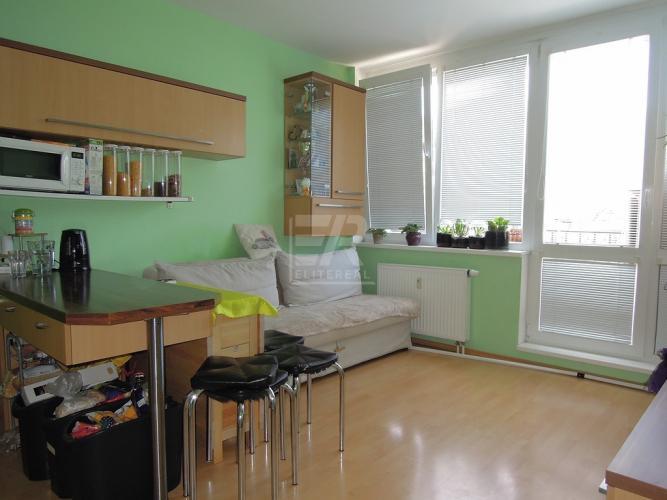 Reality ZÁVODNÁ - zrekonštruovaný byt s výhľadom na zeleň, nízke náklady - P. BISKUPICE
