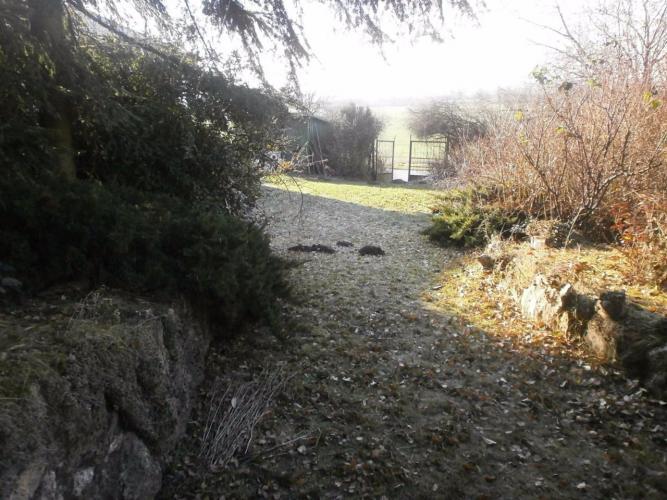 Reality Viničný domček s pozemkom v Leviciach