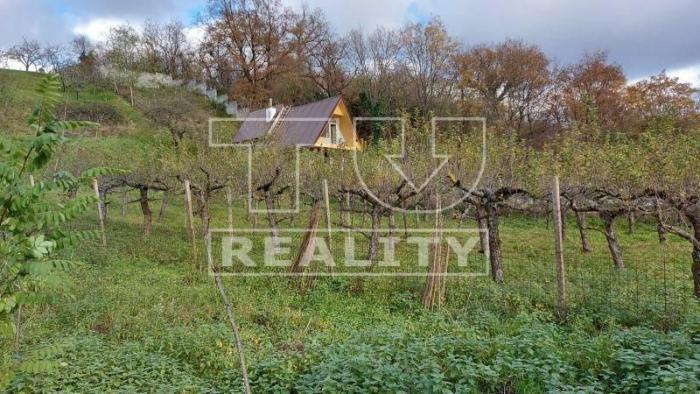 Reality Zrekonštruovaná chata s veľkou terasou v Stupave. CENA: 93 000 €