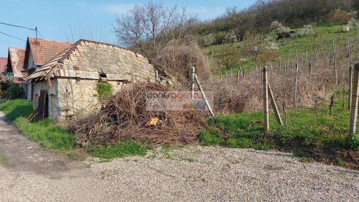 Reality Ponúkame exkluzívne na predaj pozemok o výmere 1302 m2 so starším viničným domom v Mýtnych L