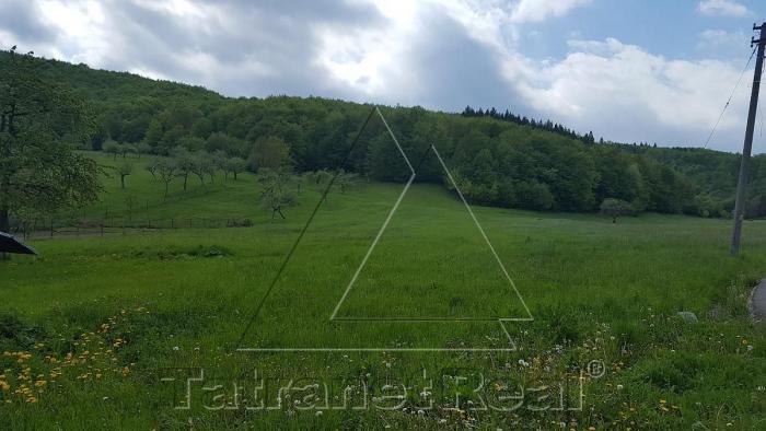 Reality Na predaj veľký 50 árový pozemok v Papíne, len 20 km od Humenného