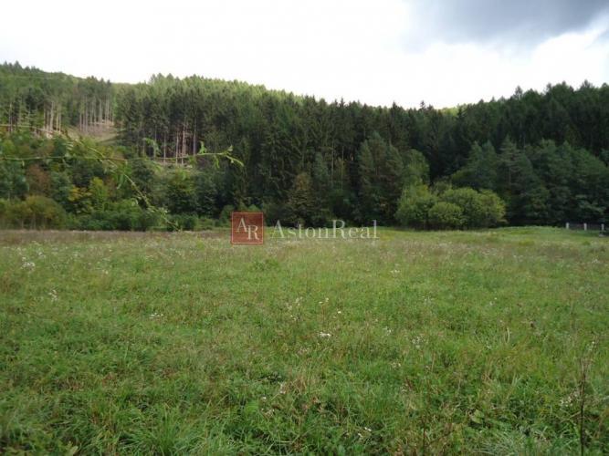 Reality Súrne hľadáme pre nášho klienta stavebný pozemok v Beluši - Podhorie