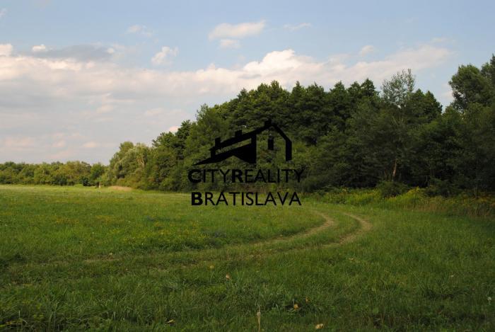 Reality Rovinaté a slnečné pozemky vo Svätom Jure, v blízkosti zastavanej časti obce.