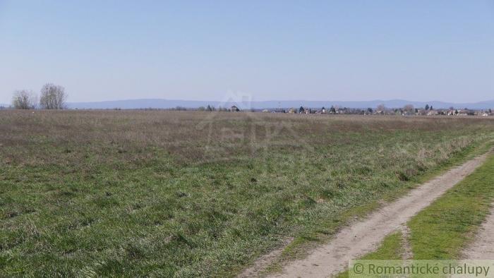Reality 44 árový pozemok v katastri Reca , 3 km od Senca na predaj