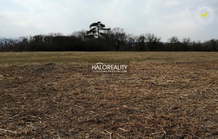 Reality Predaj, pozemok 1000 m2 Luhyňa - EXKLUZÍVNE HALO REALITY